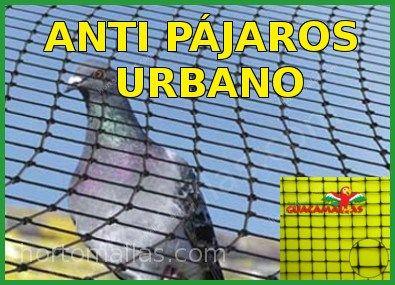 Malla Anti-Pájaros y control de palomas