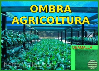 Rete ombreggiante per l'agricoltura