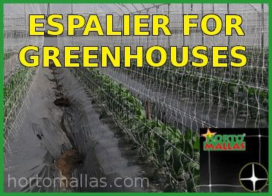 espalier for greenhouses