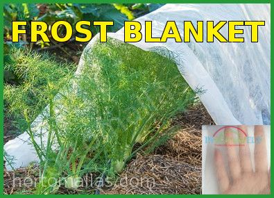 frost blanket floating row cover