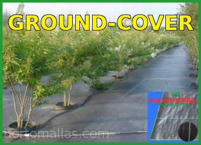 groundcover weed control barrier