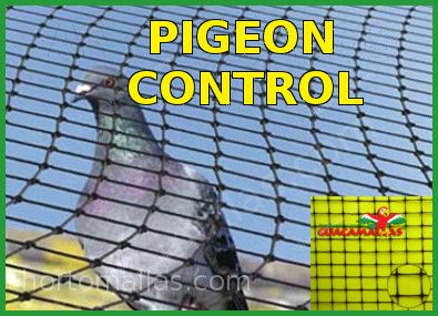 pigeon control netting
