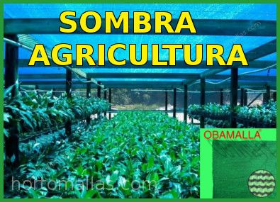 Sombra Agricultura