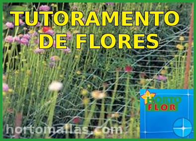rede tutora de flores HORTOFLOR sog scrog
