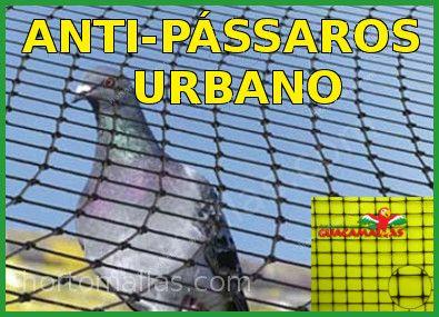 Anti-pássaros Urbano