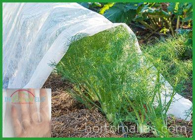Manta térmica anti insectos