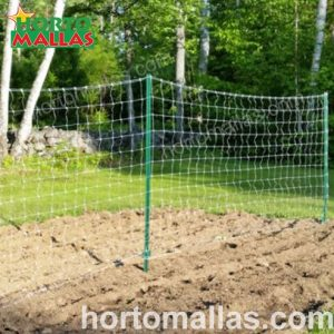 Trellis net with green stakes