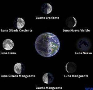 Fases luna entutorado