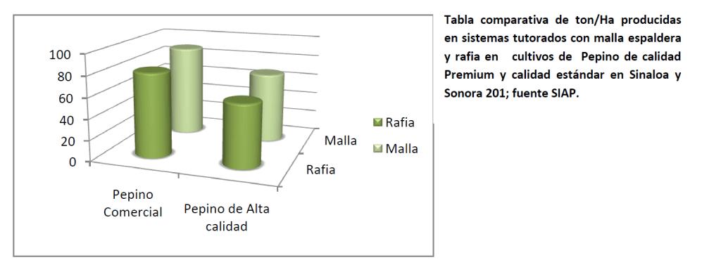 Tabela comparativa de Ton/há produzidas em sistemas de tutoramento com malha/rede treliça e ráfia. Os cultivos de Pepino de qualidade Premium e qualidade standard em Sinaloa e Sonora 201; fonte SIAP