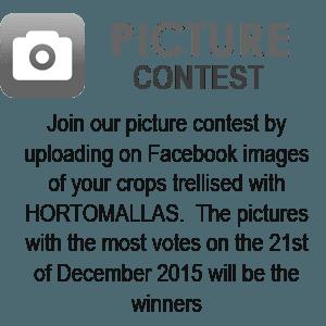 Concurso fotográfico