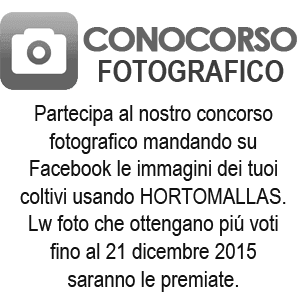 concorso fotografico