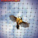 bird control net, bird control netting GUACAMALLAS