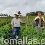 malla espaldera y agricultura