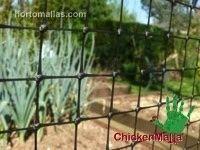 ChickenMalla