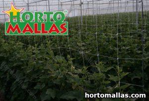 HORTOMALLAS® trellis net