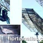 Excremento de paloma, paloma e instalacion de protección anti-pájaros GUACAMALLAS en grandes alturas