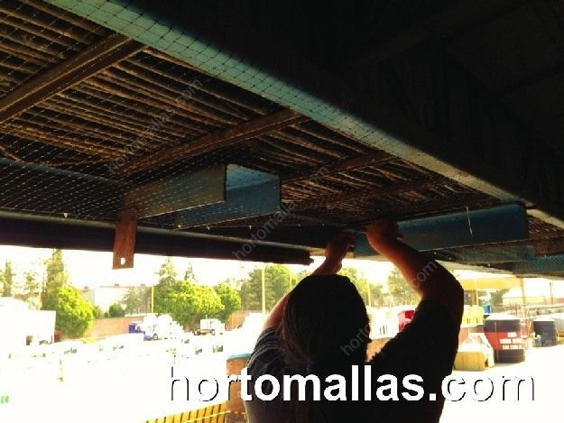 GUACAMALLA nylon mesh works as a great protection from birds