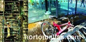 Problemática en las ciudades por excrementos y desechos de palomas y otras aves