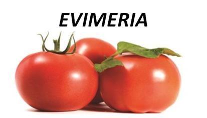 evimeria
