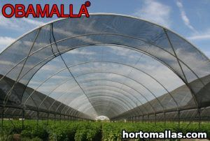 Greenhouse with shade net