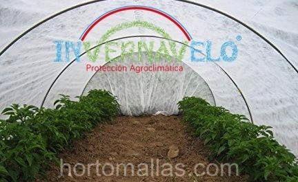 Túnel para cultivo de hortalizas hecho con tela antiheladas