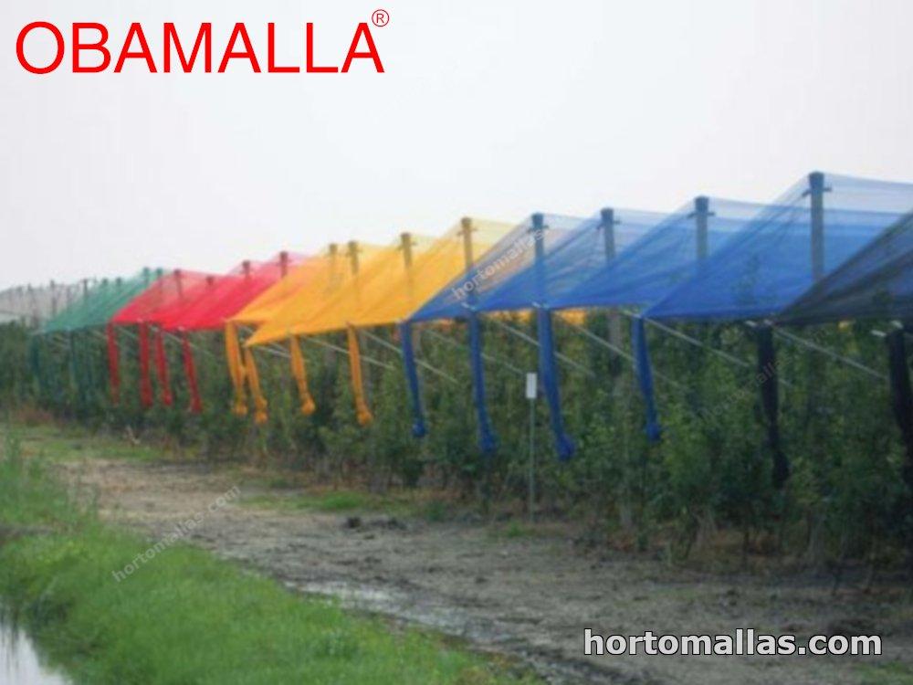 MALLA SOMBRA DE COLOR EN HORTICULTURA: MALLAS FOTOSELECTIVAS.