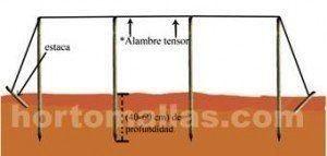 Podem ser colocadas estacas encontradas para dar maior firmeza aos postes