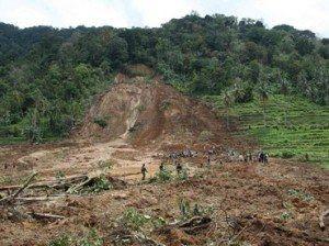 Os deslizamentos de terra afetam culturas vizinhas provocando perdas econômicas de grande importância.