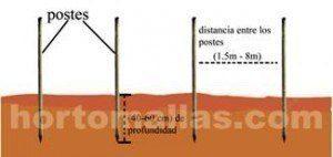 A colocação dos postes depende do tipo de cultivo e das condições do solo