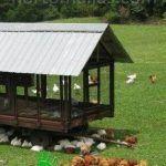 Tela gallinera para aves