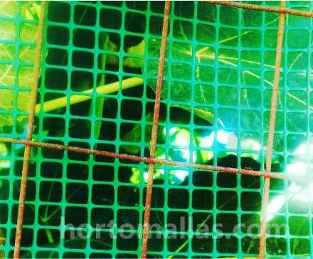 Cubierta de arbol y frutas de higo con malla para jardin HORTOMAALLAS