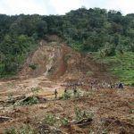 ان تجريف التربة ايضا يؤثر على المحاصبل الزراعية والتى تؤدى بدورها الى خسائر اقتصادية ذات اهمية بالغة.