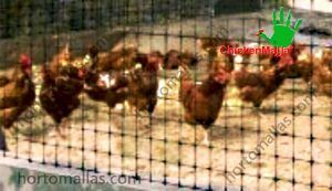Chickenmalla poultry wire mesh