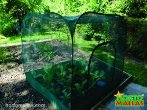 Pop-up crop cage