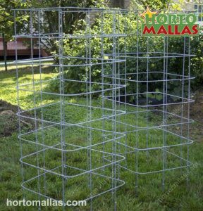 Wire Plant Cages