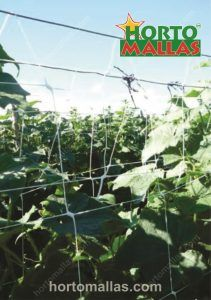 Plant net mesh
