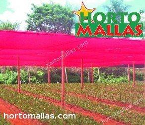 rede de sombra usada para proteger o campo de cultivo