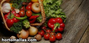 cultivo de vegetais