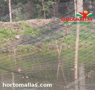 Aviary control