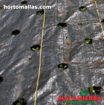 weed fabric used for avoid the weed growth