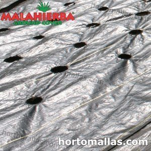 weed fabric used in cropfield