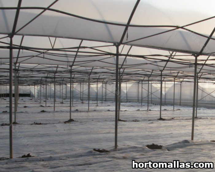 Greenhouse Plant Covers