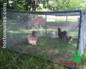Corral de pollos al aire libre hecho con malla gallinera CHICKENMALLA