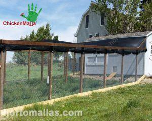 Caseta avícola hecha para la crianza de pollos orgánicos