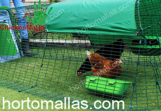 Securing Chicken Tractor with Net