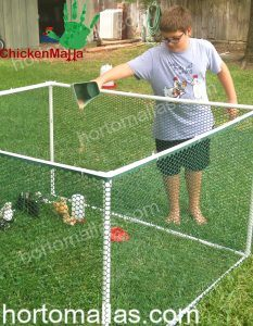 chicken corral made with hexagonal plastic netting