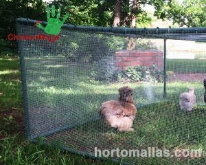 movable chicken coop, many have a roofed area made with netting.