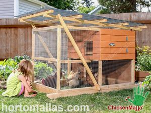 chicken coop with netting