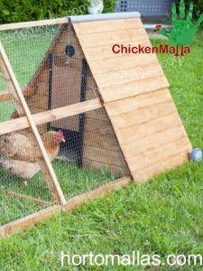 A framed chicken tractor
