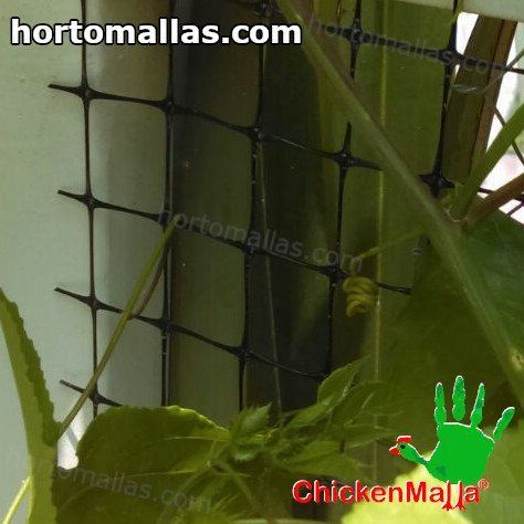 Chickenmalla installed in home